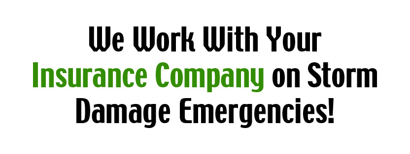 We will work with your insurance company!
